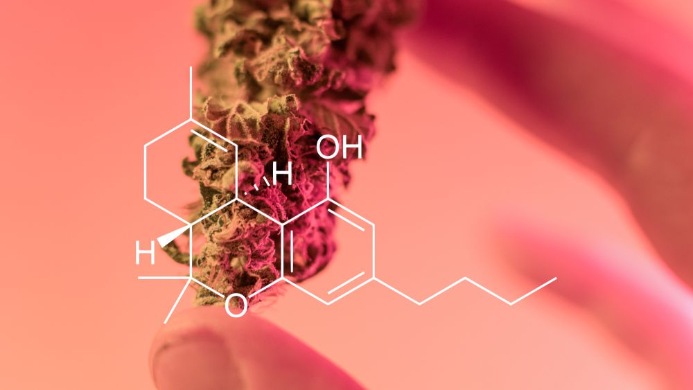 marijuana-before-and-after-lasik-205605